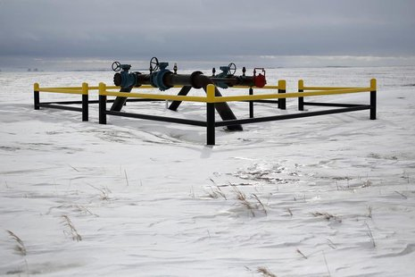 A pipeline network is seen in a field outside of Williston, North Dakota March 11, 2013. REUTERS/Shannon Stapleton