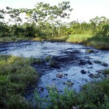 A waste pit filled with crude oil left by Texaco drilling operations years earlier lies in a jungle clearing near the Amazonian town of Sach