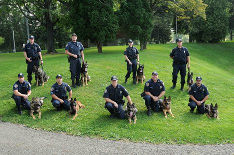 Kalamazoo Department of Public Safety's K-9 Unit.