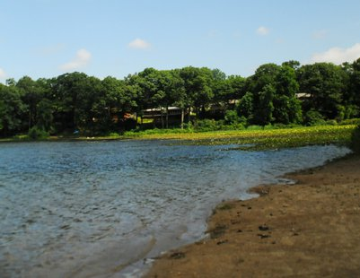 Picture of Woods Lake Beach included in the City's Five Year Parks and Recreation strategic plan.