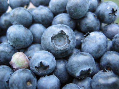 Some blueberries.