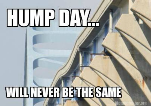 Hump Day Will Never Be The Same