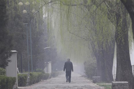 An elderly man walks along trees amid heavy haze in Beijing, March 27, 2014. REUTERS/Jason Lee