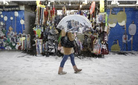 A pedestrian with an umbrella walks near a souvenir shop during a heavy snowfall in Asakusa district in Tokyo February 8, 2014. REUTERS/Yuya