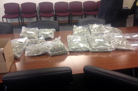 The Brown County Drug Task Force displays bags of marijuana seized in a bust, April 1, 2014. (Photo from: FOX 11).