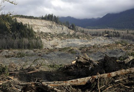 The collapsed hillside and debris field from a massive mudslide that struck Oso is pictured near Darrington, Washington April 2, 2014. REUTE