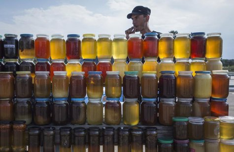 A vendor, who is also a beekeeper, sells honey at a road side market, some 170 kilometers (105 miles) north of Astana June 14, 2013. REUTERS