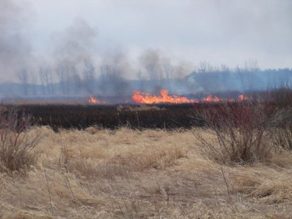 A view of the flames from a wildfire in southwest Fond du Lac County April 11, 2014.