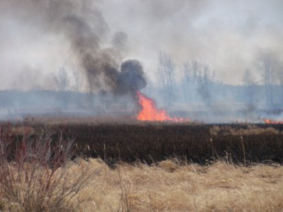 Flames from a wildfire that occurred in southwest Fond du Lac County April 11, 2014.