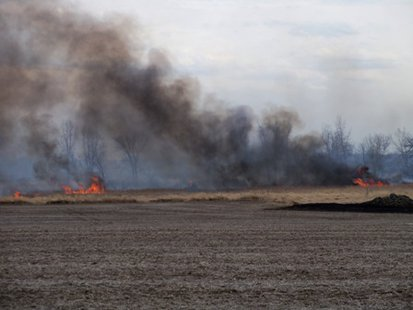 A fire burns marsh land in Fond du Lac County on April 11, 2014. (Photo from: KFIZ).
