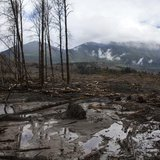 A view is seen of the large debris pile left by a mudslide in Oso, Washington, April 4, 2014. REUTERS/Max Whittaker