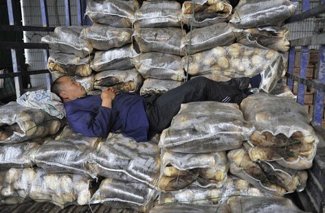 A vendor sleeps on sacks of bamboo shoots on the back of a truck at a vegetable wholesale market in Hefei, Anhui province April 11, 2014. RE