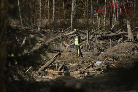 A worker looks on as search work continues in the mud and debris from a massive mudslide that struck Oso near Darrington, Washington April 2