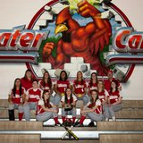 2014 Coldwater High School girls varsity softball team