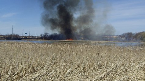 controlled marsh burn