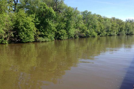 Pipe Creek in Fond du Lac County is seen, May 29, 2014. (Photo from: FOX 11)