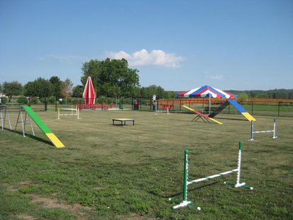 example of dog park 'Wiggly Field' Dog Park in Oregon.