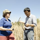 Professor Carol Johnston and visiting scientist Zhenguo Niu examine a wetlands soil core. (SDSU.edu)