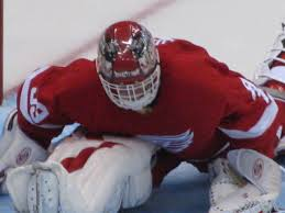 Former Detroit Red Wings goalie Dominik Hasek