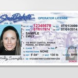 SD Drivers License