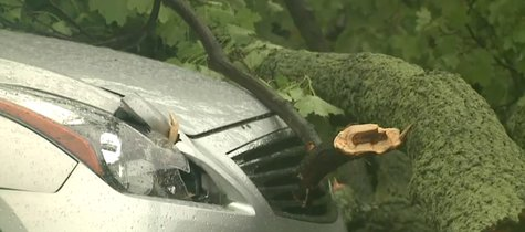 Damage from storms that hit parts of southern Wisconsin, like Milwaukee, on June 30, 2014. (Photo from: FOX 11/YouTube).