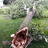 Thunderstorm damage, July 1, 2014
