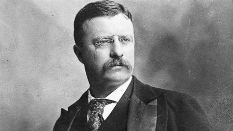Theodore Roosevelt's love of the country's natural beauty spurred him to create and conserve hundreds of national forests, parks and monuments during his presidency, but his legacy is being preserved digitally.