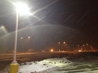 Snow from Winter Storm Carol falls in Oshkosh, Feb. 17, 2014. (Photo from: FOX 11).