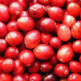 Cranberries (Photo By Muffet [CC-BY-2.0 (http://creativecommons.org/licenses/by/2.0)], via Wikimedia Commons).
