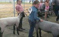 Wisconsin Valley Fair 2014 28