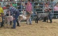 Wisconsin Valley Fair 2014 27