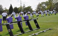 Vikings Training Camp 2014