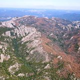 Pine Beetle infestation Custer Peak and surrounding area. (USDA.Gov)