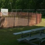 Site of the annual pig wrestling event at St. Patrick Parish in Stephensville. (Photo from: FOX 11/YouTube).