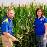 State Climatologist Dennis Todey and climate field specialist Laura Edwards from the Aberdeen Extension office examine the condition of corn at the field station south of Volga. (SDSU.edu)