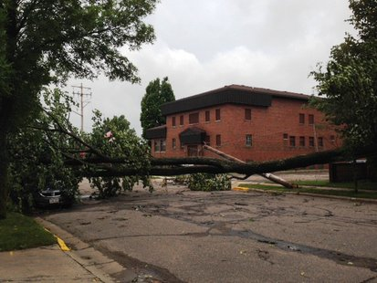 Downed tree from storms that rolled through north central and northeast Wisconsin. (Submitted photo from Wisconsin Public Service).