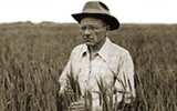 SDSU will honor renowned wheat geneticist Edgar S. McFadden with the inaugural McFadden Symposium on Wheat Improvement Sept. 23-24 at the Performing Arts Center.  Image: SDSU.edu