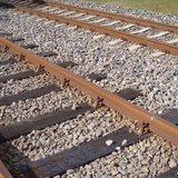 Officials Seek Federal Board's Help On Rail Delays