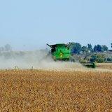 bean harvest.  Photo courtesy Stan Allen, Midwest Communications