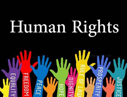 Essays On Human Rights Law