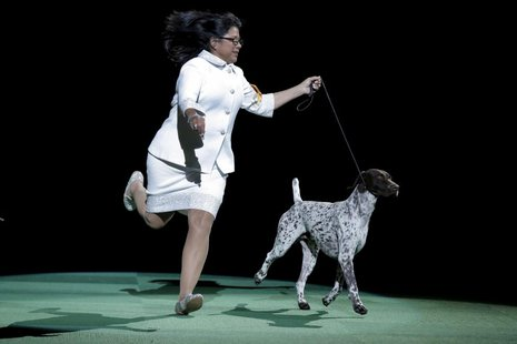 140th Westminster Dog Show was Frei's last