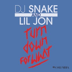 Turn Down For What (DJ Snake)