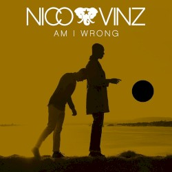 Am I Wrong Album Cover
