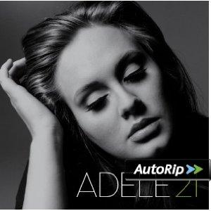 21 Album Cover