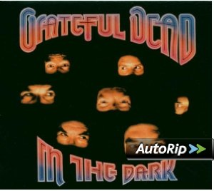 In the Dark (Grateful Dead)