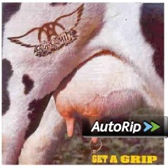 Get a Grip (Aerosmith)