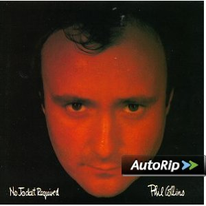 No Jacket Required Album Cover