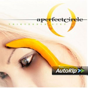 Thirteenth Step Album Cover