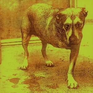 Alice in Chains Album Cover