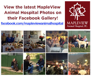 Mapleview Animal Hospital - Facebook Photos